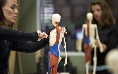 Etiologia rehabilitacji opartej na ćwiczeniach pilatesu CZĘŚĆ II